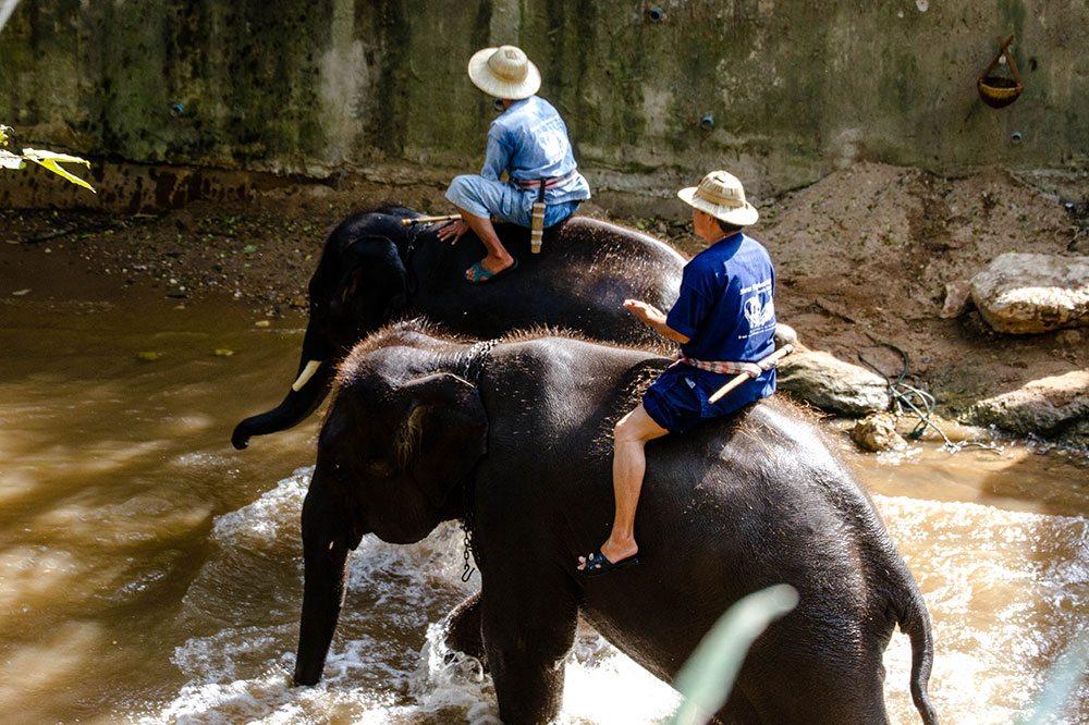 Mae Rim tourist attractions.