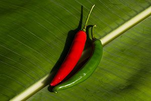 CHILI PEPPERS, RED HOT