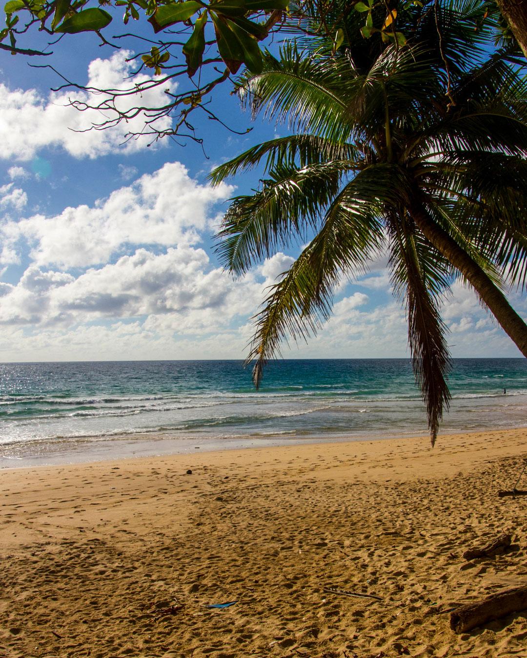 Surin Beach Phuket Beaches