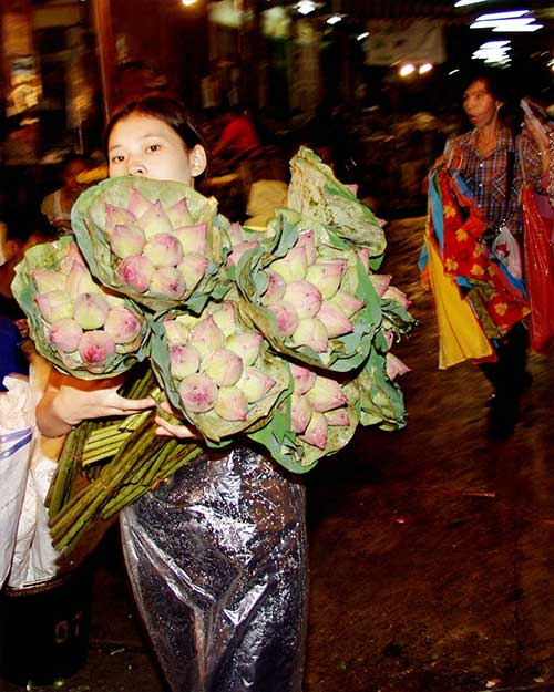 Lotus-girl-Bangkok-flower-market