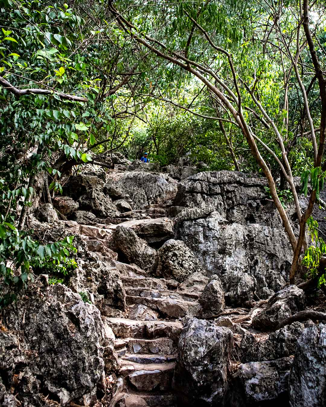 Final-climb-1-Phraya-Nakhon-Cave