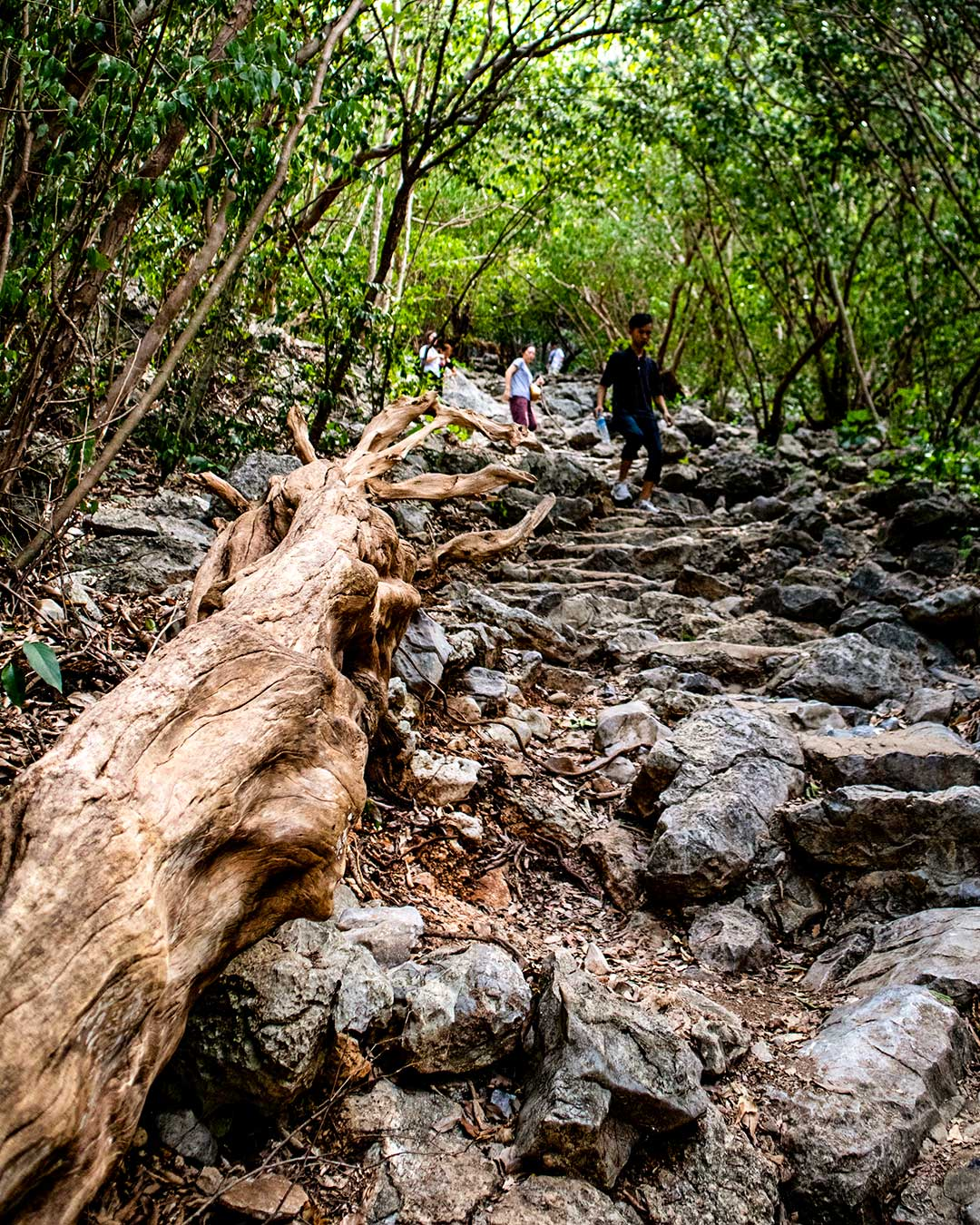 Final-climb-2-Phraya-Nakhon-Cave